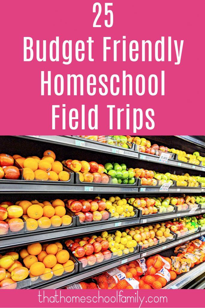 25 budget friendly homeschool field trips